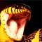 User avatar for JonnyT1234
